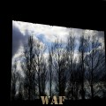 window of trees