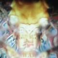 Razón de Buda