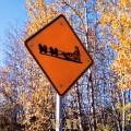 Dog Sled Sign, on the Fairbanks Alaska street