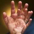Mãos de Família...