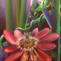 Flor de Mantis