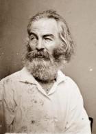 Walt Whitman's picture