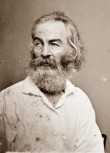 Walt Whitman's picture