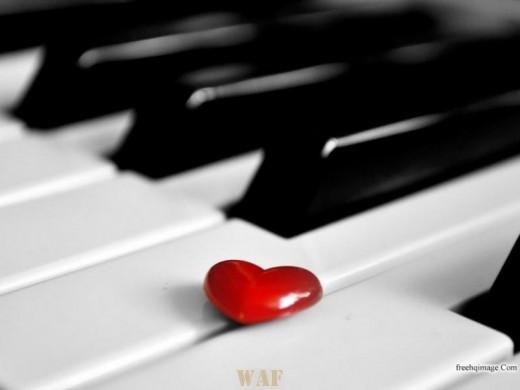 Não podemos impedir que amem a pessoa que nós amamos ...