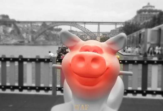 Saio do Porto com um sorriso