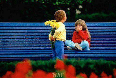 Assim é o Amor ...