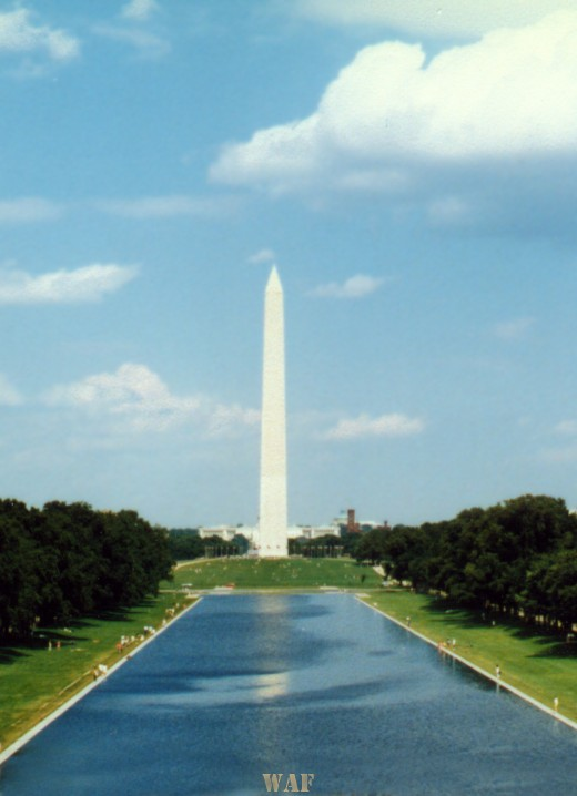 the Washington Mall (the pond and the Washington Monument)