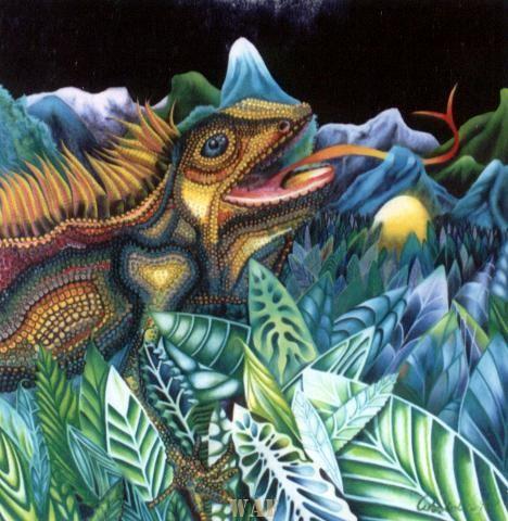 Noche de la Iguana